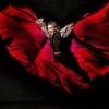 Vámpírok tánca Szegeden 2016-ban - Jegyek a Drakula utolsó táncára itt!
