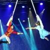 Russian Circus on Ice - Orosz Cirkusz a jégen Budapesten a BOK Csarnokban - Jegyek itt!